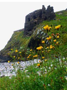 Scotland Castles, Scottish Castles, Orkney Islands, Irish Sea, Castle Ruins, Cathedral Church, Beautiful Castles, Scotland Travel, Monument Valley