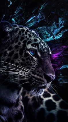 Jaguar Predator Eyes - iPhone Wallpapers