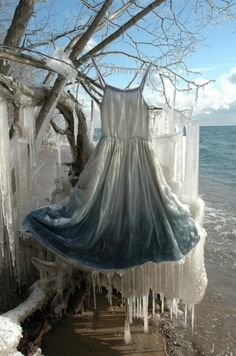 "anmazine: ""ICECLE SLIP' created by NicoleDextras (www.nicoledextras.com Silk slip encrusted with ice on the stormy shores of Lake Ontario surrounded by icicle buildup on the shoreline's trees."""
