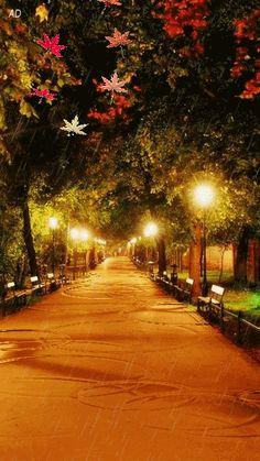 Beautiful Places To See Beautiful Gif, Beautiful World, Beautiful Places, Beautiful Pictures, Beautiful Scenery, Autumn Rain, Autumn Leaves, Autumn Nature, Fall Pictures
