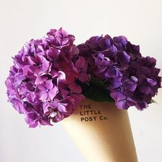 The Little Posy Co.