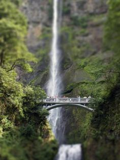 "Saatchi Art Artist TOULA MAVRIDOU-MESSER; Photography, ""Bridge Over Multnomah Falls"" #art"