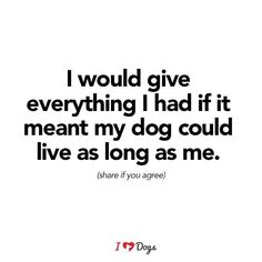 ...or my Cat or any other beloved furry family members