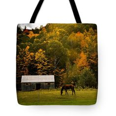 #jefffolger #vistaphotography Tote Bag featuring the photograph Horse Under Golden Fall Foliage by Jeff Folger