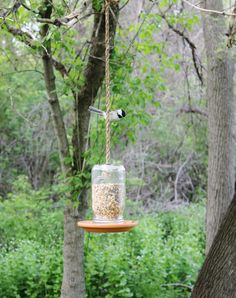 Mason Jar Bird Feeder  Hand Crafted Outdoor Hanging by BootsNGus, $38.00