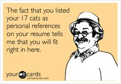 Free and Funny Workplace Ecard: The fact that you listed your 17 cats as personal references on your resume tells me that you will fit right in here. Create and send your own custom Workplace ecard. Cover Letter Tips, Cover Letter For Resume, Cover Letters, Work Memes, Work Humor, Personal Reference, Funny Memes, Jokes, Office Humor
