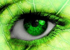 30 Wonderful Art of Eye Candy for your Inspiration Leafy Eye by – reinedescoeurs Pretty Eyes, Cool Eyes, Beautiful Eyes, Rainbow Eyes, Rainbow Colors, Affinity Photo, Crazy Eyes, Look Into My Eyes, Eye Photography