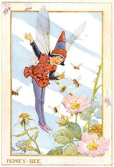'Honey Bee Fairy' - Illustration from the book 'The Insect Fairies'