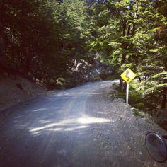 Camino a Tortel y Villa Ohiggins