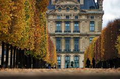 Paris jardin des Tuileries, la terrasse le long de la Seine 2 avec le Louvre au fond