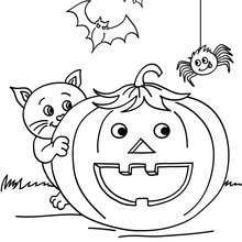 Smiling pumpkin with halloween friends