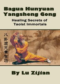 Lu Zijian 117 Wudang Martial Arts Master