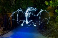 Dinosaur light painting - very cool! Light Painting Photography, Texture Photography, Exposure Photography, Types Of Photography, Abstract Photography, Photography Ideas, Dinosaur Light, Camera Techniques, Prehistoric Creatures