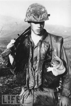 A soldier of the U.S. Seventh Marines carries a rescued puppy in his pocket. SW of Da Nang, Vietnam 1968.