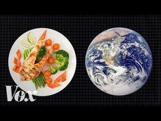 You don't have to go vegan to fight climate change. Research shows that small changes to our diets can make big differences. Climate Lab is produced by the University of California in partnership with Vox. Hosted by conservation scientist Dr. Sitges, Food Waste, Mediterranean Recipes, Fitness Nutrition, Going Vegan, Climate Change, Weather Change, Dinner Plates, Food Porn