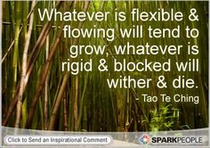 whatever is flexible + flowing will tend to grow, whatever is rigid + blocked will wither + die.