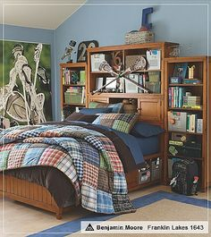 This is what we want to do with our son's room except with Hockey and not Lacrosse