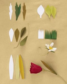 Paper flower: Shaping and Attaching Leaves