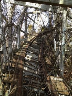 Don't know where this abandoned roller coaster is located.