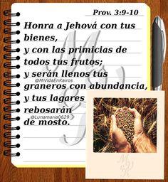 MVeK Proverbios