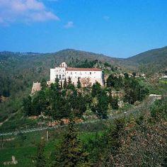 Der Weinkeller Italiens: Eine schier unüberschaubare Anzahl von Weinsorten kommt aus Apulien, der Region, in der der meiste italienische Wein erzeugt wird.