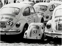 Young Herbie - Beetles