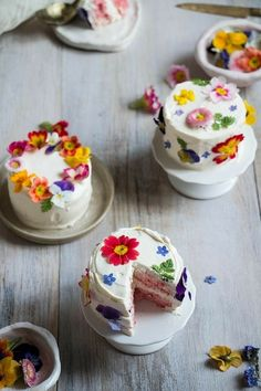 Mini Cakes with Edible Flowers. Taste the rainbow! Learn how to make mini ombré layer cakes brightened with edible flowers. Mini Wedding Cakes, Mini Cakes, Cupcake Cakes, Individual Wedding Cakes, Individual Cakes, Tea Cakes, Pretty Cakes, Beautiful Cakes, Amazing Cakes
