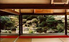 Jacqueline Hassink apresenta série de fotos feitas em tradicionais templos budistas.