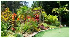Amazing Landscaping Design Programs Free