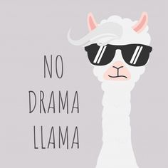 Cute llama design with no drama motivational quote. No Drama Lama, Drama Drama, Llama Drawing, Llama Arts, Cute Llama, Fabric Painting, Cute Drawings, Cute Wallpapers, Planner Stickers