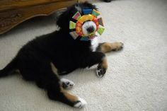 The toy is obviously defective