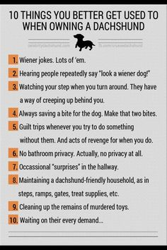 Owning a dachshund means...