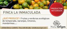 Frutas y verduras ecológicas recién recolectadas!!