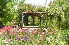 Google Image Result for http://www.lillicoglassstudio.com.au/images/garden.jpg