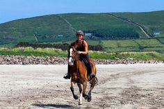 1 Hour Trek: Dingle Bay & Ballymacadoyle Hill. Great horse riding in Ireland found on stable-mates.com. Search, Book, & Ride!