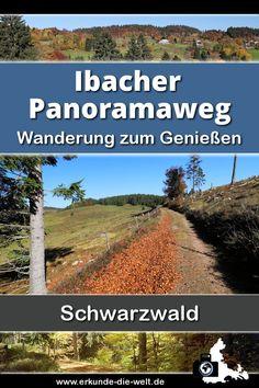 """Wanderung auf dem 2016 zertifizierten Schwarzwälder Genießerpfades """"Ibacher Panoramaweg"""" im herbstlichen Schwarzwald."""