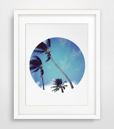Blue Sky Palm Tree Photography Summer Sky by MelindaWoodDesigns, $5.00
