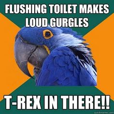 my very first Paranoid Parrot http://in-betweentimes.blogspot.com/2010/04/what-you-do-not-know-about-me.html