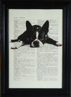 boston terrier on a vintage dictionary art print