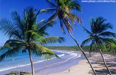 Ilha de Boipeba - BA - Pesquisa Google