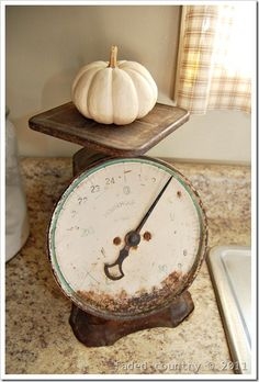 Pumpkin on scale