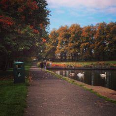 Inverleith Park #stockbridgeedinburgh #stockbridge #edinburgh #scotland