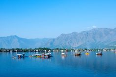44 lugares lindos para visitar na Índia - Srinagar, Kashmir