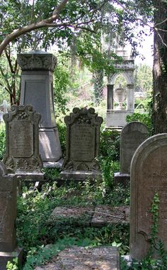 Ghost Walks | Travel | Vacation Ideas | Road Trip | Places to Visit | Charleston | SC | Sightseeing Tour | Monument | Tour | Tourist Attraction