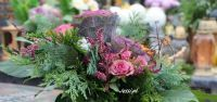 Unfussy and long-lived, perennials pump out beautiful foliage and flowers year after year Flowers Perennials, Flowers, Planting Bulbs, Garden, Shrubs, How To Attract Hummingbirds, Perennials, Garden Center, Plants