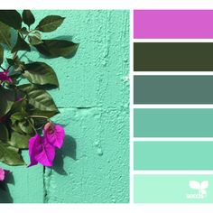Color Detail ❤ liked on Polyvore featuring colors and design seeds