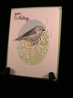 Bird Day - Stamp Class 7/16 by susie nelson - Cards and Paper Crafts at Splitcoaststampers