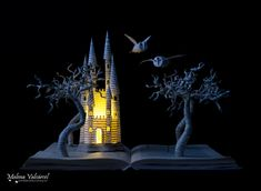 Book Sculptures Are My Passion, I Work With Paper To Create Elaborated Forms