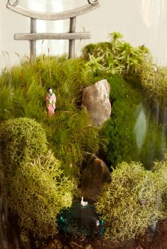 20110512_mg_3058-edit by twigterrariums, via Flickr