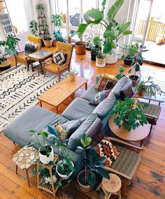 boho living space, wood floors, plants, rug, pillows, textures